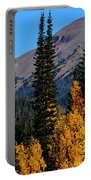 Thunder Mountain Aspens Portable Battery Charger