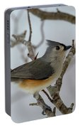 Titmouse Winter Morning Cutie  Portable Battery Charger