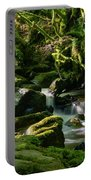 Torc Waterfalls Two Portable Battery Charger