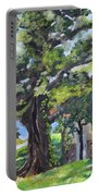 Tree At Cartecay Portable Battery Charger