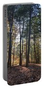 Trees And Shadows 2 Portable Battery Charger