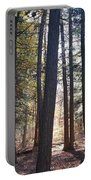 Trees And Shadows  Portable Battery Charger