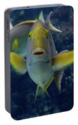 Tropical Fish Poses. Portable Battery Charger