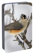 Tufted Titmouse Winter Tranquility Portable Battery Charger