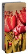 Tulip Fields Portable Battery Charger by Anjo Ten Kate
