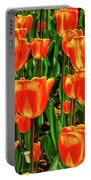 Tulips 2019d Portable Battery Charger