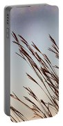 Turkey Foot Grass At Sunset Portable Battery Charger