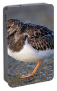 Turnstone Portable Battery Charger