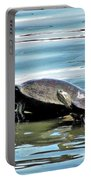 Turtles - Mother And Child Portable Battery Charger