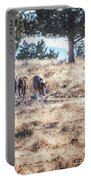 Two For One Portable Battery Charger by Belinda Greb