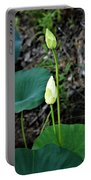 Two White Lotus Flower Buds Portable Battery Charger