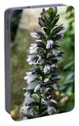 Up A Hill Portable Battery Charger