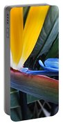 Vibrant Bird Of Paradise #2 Portable Battery Charger