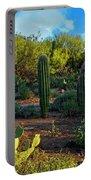 Vislumbre De Sonoran H1833 Portable Battery Charger by Mark Myhaver