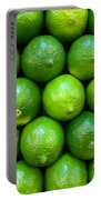 Wall Of Limes Portable Battery Charger