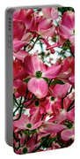 Washington State Magnolia Portable Battery Charger by Mae Wertz