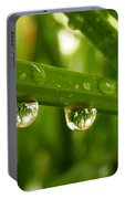Water Drops On Wheat Leafs Portable Battery Charger