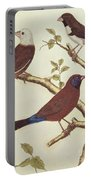 White Headed Munia, Double Coloured Seed Eater And Violet Eared Waxbill Portable Battery Charger