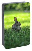 Wild Bunny Rabbit Portable Battery Charger