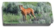 Wild Horse Foal Portable Battery Charger