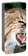 Wildcats Mascot 4 Portable Battery Charger