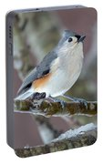 Wintry Virginia Titmouse Portable Battery Charger