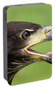 Young Bald Eagle 2 Portable Battery Charger