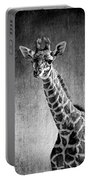 Young Giraffe Black And White Portable Battery Charger