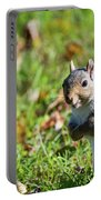 Your Friendly Neighborhood Squirrel Portable Battery Charger