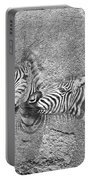 Zebras No 02 Portable Battery Charger