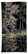 Alder Tree Reflection In Pond Beach Towel