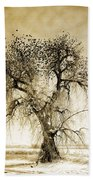 Bird Tree Fine Art  Mono Tone And Textured Beach Towel
