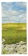 Blueberry Field With Blue Sky And Clouds In Maine Beach Towel