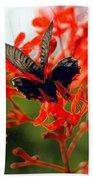Butterfly Dance Beach Towel