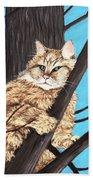 Cat On A Tree Beach Towel