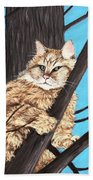 Cat On A Tree Beach Sheet
