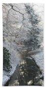 Creek Reflection Beach Towel