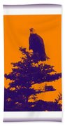 Eagle Scout At Sunset Beach Towel