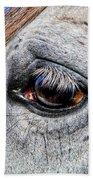 Eye Of A Horse Beach Towel
