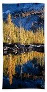 Larch Tree Reflection  Beach Towel
