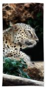 Leopard Watching It's Prey Beach Towel