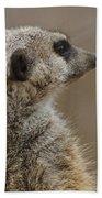 Meerkat Beach Towel
