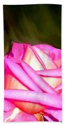 Painted Pink Rose Beach Towel