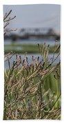 Purpletop Vervain Wildflowers Beach Towel
