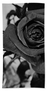 Rose In Black And White Beach Towel