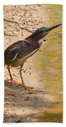 Shady Spot Beach Towel