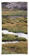 Titcomb Basin Marsh Beach Towel