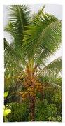 Westmoreland Jamaica 4 Beach Towel
