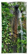 001 Falling Waters For The Cactus Lover In You Buffalo Botanical Gardens Series Beach Towel
