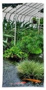 001 Within The Rain Forest Buffalo Botanical Gardens Series Beach Towel